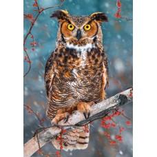 Puzzle Castorland 500 Great Hornet Owl