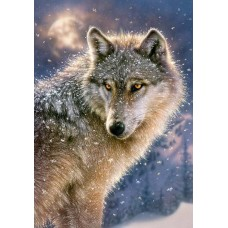 Puzzle Castorland 500 Lone wolf