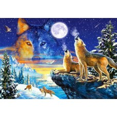 Puzzle Castorland 1000 Howling Wolves