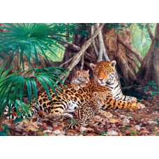 Puzzle Castorland 3000 Jaguars in the jungle