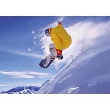 PUZZLE EDUCA 500 Snowboard