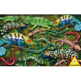 Puzzle Piatnik 1000 Salamandre