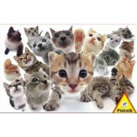 Puzzle Piatnik 1000 Pisici