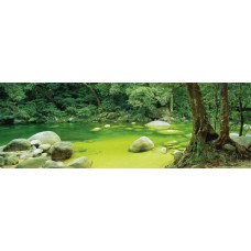 Puzzle Schmidt 1000 Mark Gray : Mossman Gorge Queensland Australia