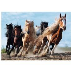 Puzzle Trefl 1000 Galloping horses