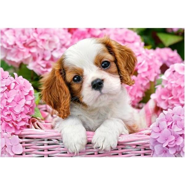 Puzzle Castorland - 500 de piese - Pup in Pink Flowers
