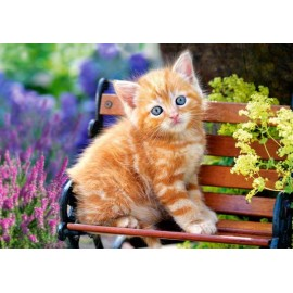 Puzzle Castorland - 500 de piese - Ginger Kitten