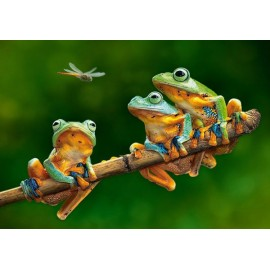Puzzle Castorland 500 The Frog Companions---