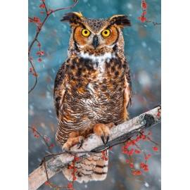Puzzle Castorland - 500 de piese - Great Hornet Owl
