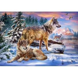Puzzle Castorland 500 WOLFISH WONDERLAND