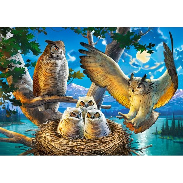 Puzzle Castorland 500 OWL FAMILY