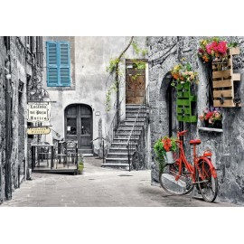 Puzzle Castorland - Charming Alley with Red Bicycle 500 piese (53339)