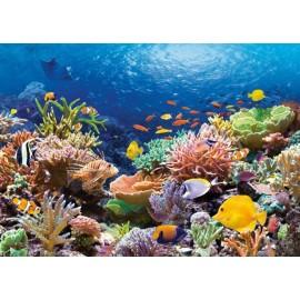 Puzzle Castorland - 1000 de piese - Pesti in reciful de corali