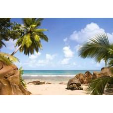 Puzzle Castorland - 1000 de piese - Plaja din paradis