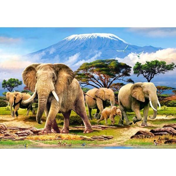 Puzzle Castorland 1000 Kilimanjaro Morning---