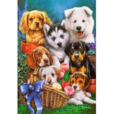Puzzle Castorland - Puppies 1.000 piese (104048)