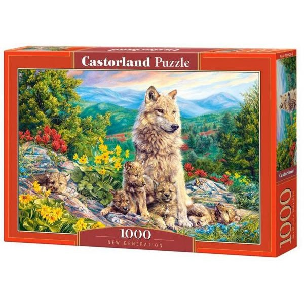Puzzle Castorland 1000 NEW GENERATION