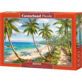 Puzzle Castorland 1000 Pathway to Paradise