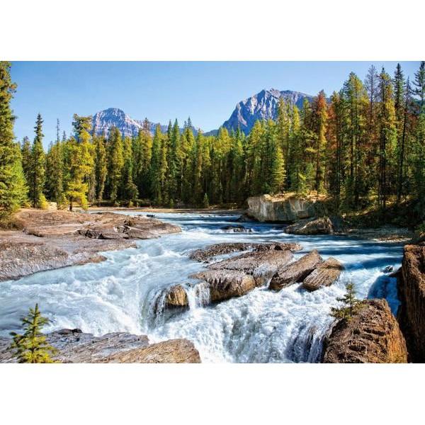 Puzzle Castorland - 1500 de piese - Athabasca River, Jasper National Park, Canada