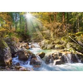 Puzzle Castorland - 2000 de piese - The forest stream