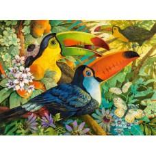 Puzzle Castorland - Interlude 3000 piese