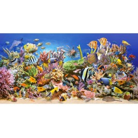 Puzzle Castorland 4000 Underwater Life