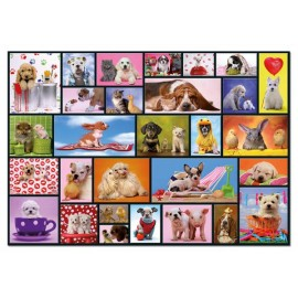 Puzzle Educa - Shared Moments 1000 piese