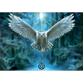 Puzzle Educa - Awake your magic 500 piese