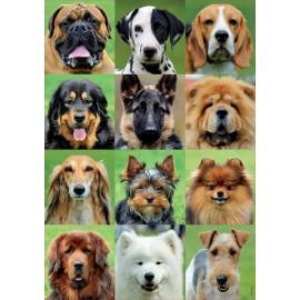 Puzzle Educa 500 piese Collage de perros