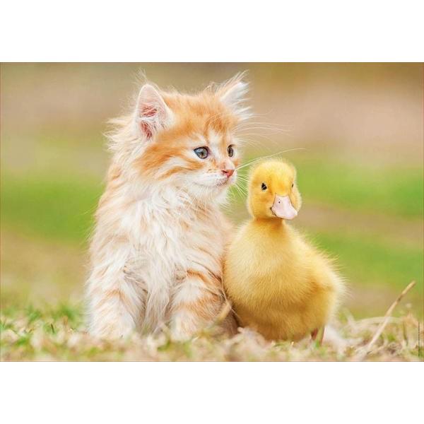 Puzzle Educa 500 piese Amigos adorables