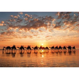 Puzzle Educa - Sunset In Beach Cable 1000 piese (18492)