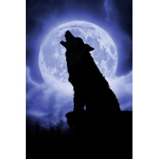Puzzle Schmidt 500 Julie Fain : Full moon night---