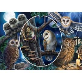 Puzzle Schmidt 1000 Lisa Parker: Mysterious Owls