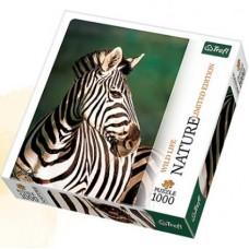 Puzzle Trefl 1000 Nature - Zebra