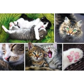 Puzzle Trefl - Collage - Cats 1.500 piese (61520)